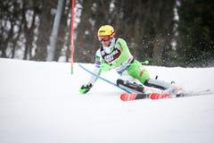 De Slalom van de Wereldbekermensen van Audi FIS royalty-vrije stock afbeeldingen