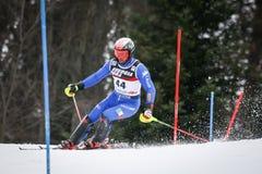 De Slalom van de Wereldbekermensen van Audi FIS stock foto's