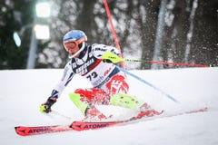 De Slalom van de Wereldbekermensen van Audi FIS stock fotografie