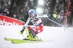 De Slalom van de Wereldbekermensen van Audi FIS royalty-vrije stock foto's