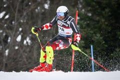 De Slalom van de Wereldbekermensen van Audi FIS royalty-vrije stock fotografie