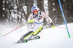 De Slalom van de Wereldbekermensen van Audi FIS stock afbeelding