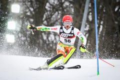 De Slalom van de Wereldbekermensen van Audi FIS royalty-vrije stock afbeelding