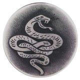 De slang - een symbool van wijsheid en vitaliteit, het beschermerleven, gezondheid stock afbeeldingen