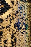 De slang van de python Royalty-vrije Stock Afbeeldingen