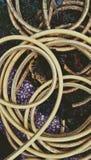 De slang van de tuin Stock Afbeelding