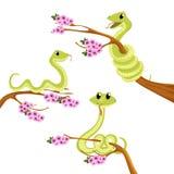 De Slang Vector Dierlijke Illustratie van beeldverhaal Leuke Groene Glimlachen royalty-vrije illustratie