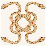 De slangen strengelen in een verwarring ineen Stock Afbeeldingen