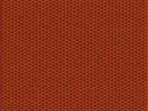 De slanghuid van Vipe Royalty-vrije Stock Afbeeldingen