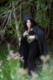 De slechte heks verbergt achter de struiken Royalty-vrije Stock Fotografie