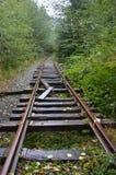 De Sleep` s Verlaten Spoorweg van de Salmonberryrivier Stock Afbeelding