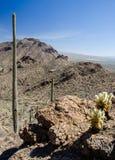 De Sleep Tucson Arizona van de poortenpas stock afbeeldingen