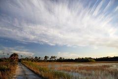 De Sleep van Backcountry van Everglades Stock Foto's