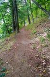 De sleep van de wandeling in de bergen Stock Fotografie