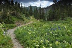 De sleep van de wandeling in de Rotsachtige Bergen van Colorado