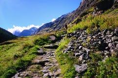 De sleep van de wandeling in Zwitserse alpen Stock Foto's