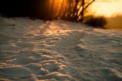 De sleep van de winter bij zonsondergang Stock Foto