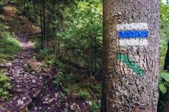 De sleep van Prielomhornadu in Slowaaks Paradijs stock foto's