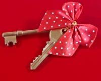 De sleutel van het skelet en van het huis Stock Afbeeldingen