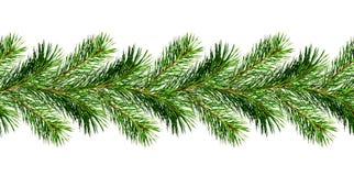 De slinger van de boomtakjes van de Kerstmispijnboom Royalty-vrije Stock Foto's