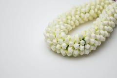 De slinger van de jasmijn op witte achtergrond Royalty-vrije Stock Fotografie
