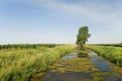 De sloot van de drainage Stock Fotografie