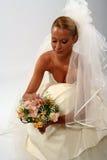De sluier van de bruid Royalty-vrije Stock Afbeeldingen