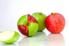 De smakelijke appelen komen samen Royalty-vrije Stock Foto