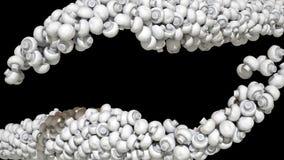 De smakelijke champignon schiet stromen op zwarte als paddestoelen uit de grond Royalty-vrije Stock Foto's