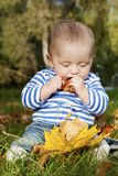 De smakelijke herfst Royalty-vrije Stock Afbeelding