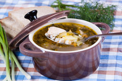 De smakelijke soep in steelpannen met een lepel, sluit omhoog Stock Afbeelding