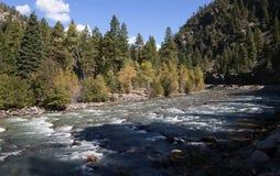 De Smalle Maatspoorweg van Durango aan Silverton die Rocky Mountains door de Rivier Animas in Colorado de V.S. doorneemt Stock Afbeeldingen