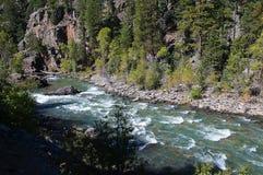 De Smalle Maatspoorweg van Durango aan Silverton die Rocky Mountains door de Rivier Animas in Colorado de V.S. doorneemt Royalty-vrije Stock Foto