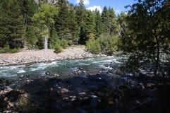 De Smalle Maatspoorweg van Durango aan Silverton die Rocky Mountains door de Rivier Animas in Colorado de V.S. doorneemt Stock Afbeelding