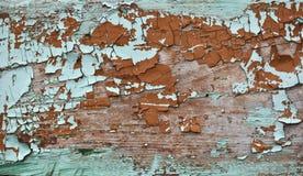 De smaragdgroene schaduw kleurde gebarsten verfschil op houten textuur stock afbeeldingen