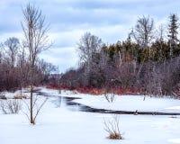 De smeltende kreek in de lente begint te stromen stock foto's