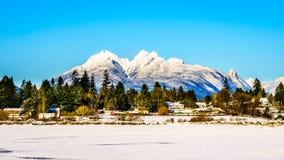 De snö täckte maxima av det guld- öraberget bak staden av fortet Langley i Fraser Valley Royaltyfri Bild