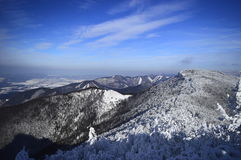 De snöig kullarna Fotografering för Bildbyråer