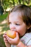De Snack van de appel Royalty-vrije Stock Fotografie