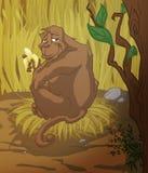 De snack van de gorilla Stock Fotografie