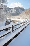 De sneeuw stock foto's