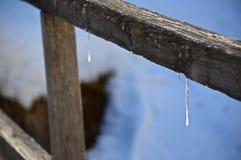 De sneeuw Royalty-vrije Stock Fotografie