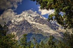 De sneeuw Afgedekte Piek van de Berg Frame door Bomen Stock Afbeelding