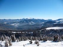 De sneeuw behandelde bergenpieken met het heuvels behandelde landschap van de sparren boswinter van de Karpaten in de Oekraïne royalty-vrije stock afbeeldingen