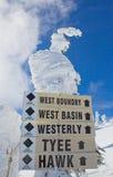 De sneeuw behandelde boom met tekens Royalty-vrije Stock Afbeelding