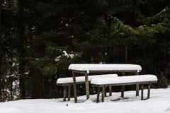 De sneeuw behandelde houten lijst en banken in bos Royalty-vrije Stock Afbeelding