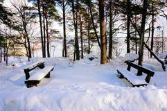 De sneeuw behandelde houten stoelen dichtbij het overzees Royalty-vrije Stock Foto's