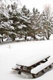 De sneeuw Behandelde Lijst van de Picknick Royalty-vrije Stock Foto