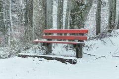 De sneeuw behandelde rode bank bij bos in wintertijd Royalty-vrije Stock Afbeelding