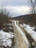De sneeuw behandelde slepen in het hout Stock Foto